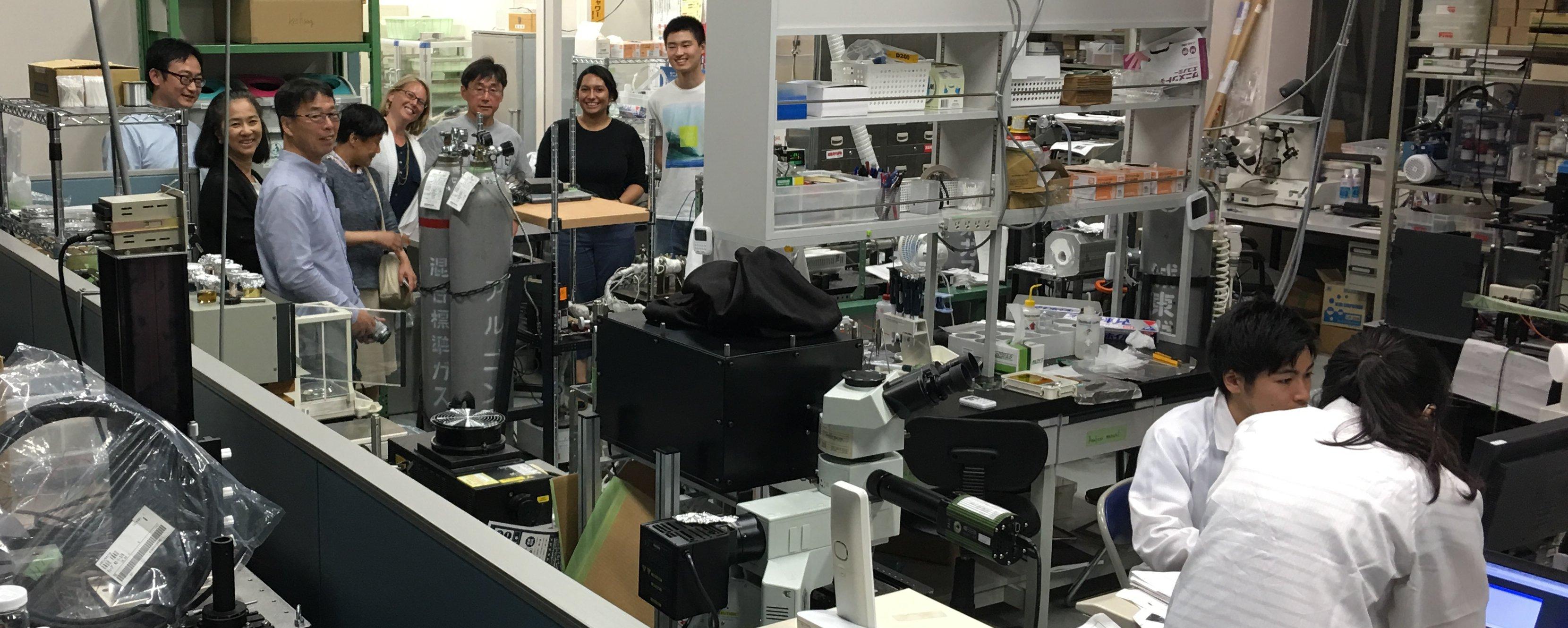 david mermin quantum computer science pdf